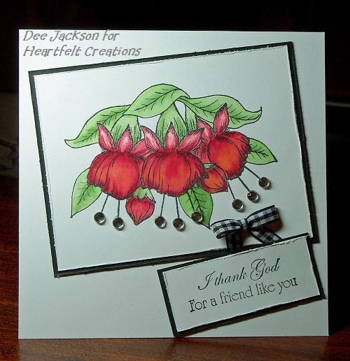 HC New Fuchsia