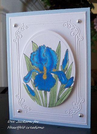 HC Release Blue Iris