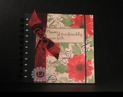 Ks_notebook_reds_2